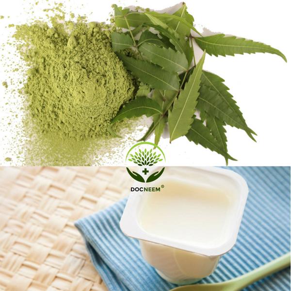 Cách dùng bột lá Neem để chăm sóc da mụn, da nhờn